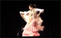 Flamenco por Alegrías